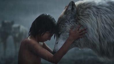 MowgliWolf